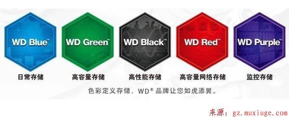 西部数据绿盘、蓝盘、黑盘、红盘和紫盘的区别